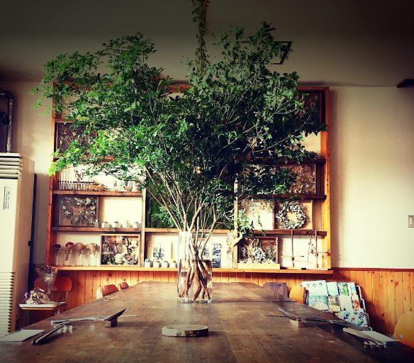 森のナカノカフェ