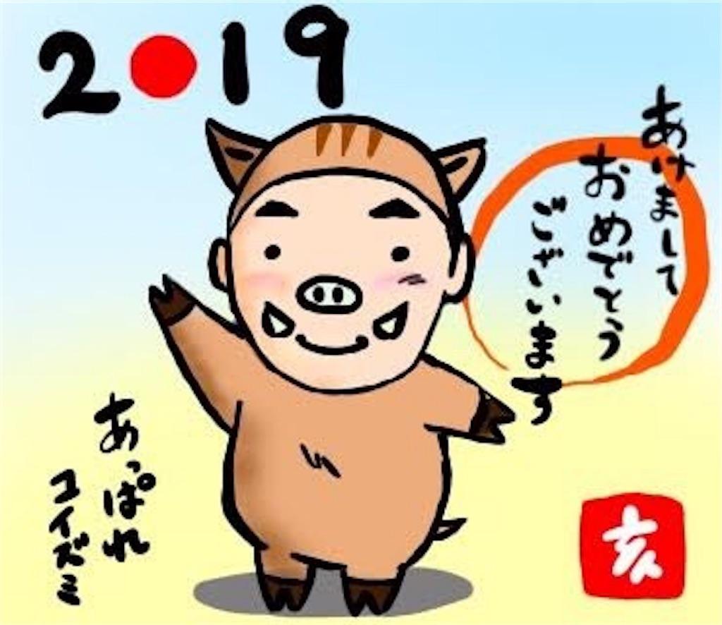 f:id:akoizuminobaka:20190101171946j:image