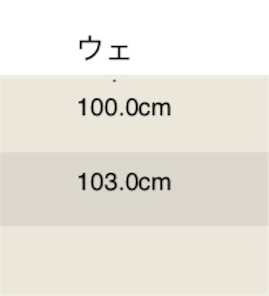 f:id:akoizuminobaka:20190401004143j:image