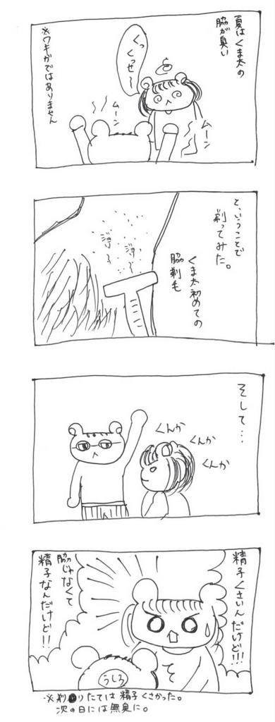 f:id:akokuma:20161020202255j:plain