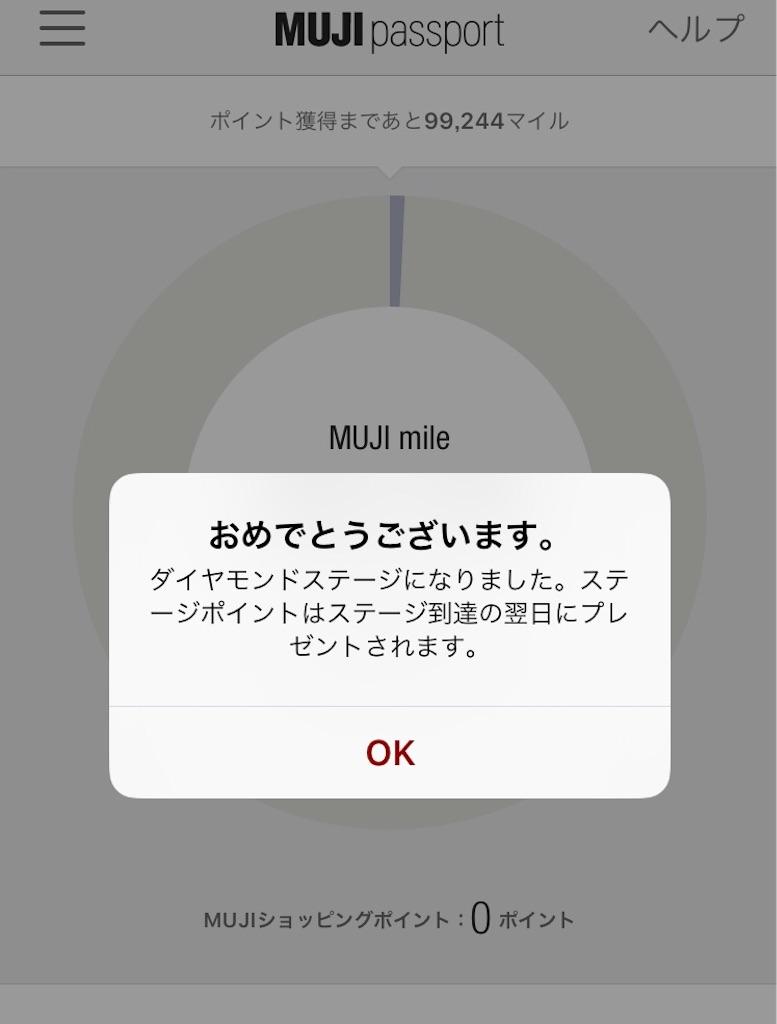 f:id:akomochi:20190101205830j:image