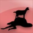 f:id:akusum26:20200113085752p:plain