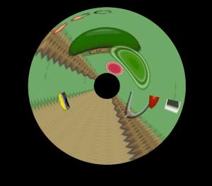 circle warp