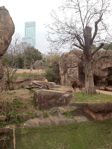 2014 1 4 f13d2