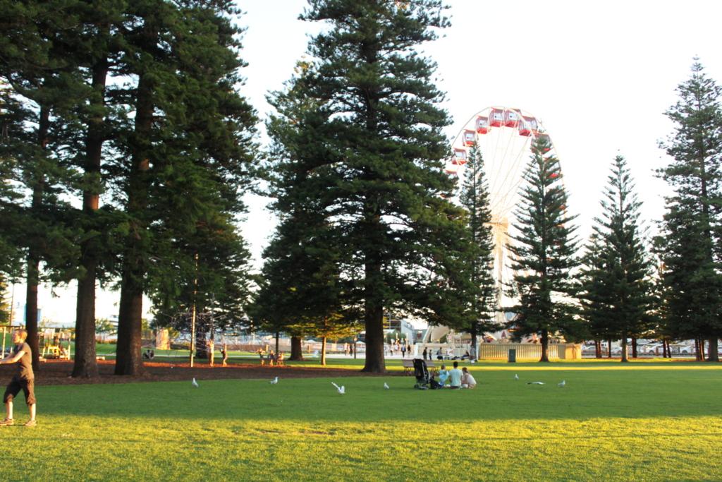 Freo Park