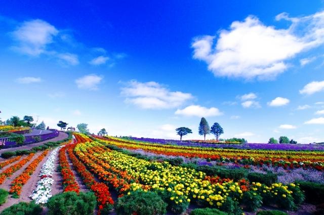 日本で最も美しい村