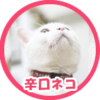 karakutineko_doya