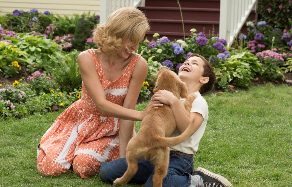 今すぐ愛犬の顔が見たくなる映画『僕のワンダフル・ライフ』