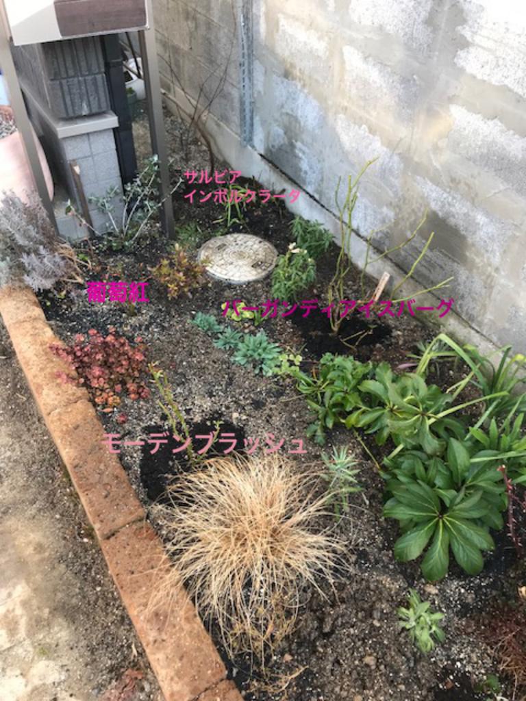 f:id:algernonab:20180224014555p:plain