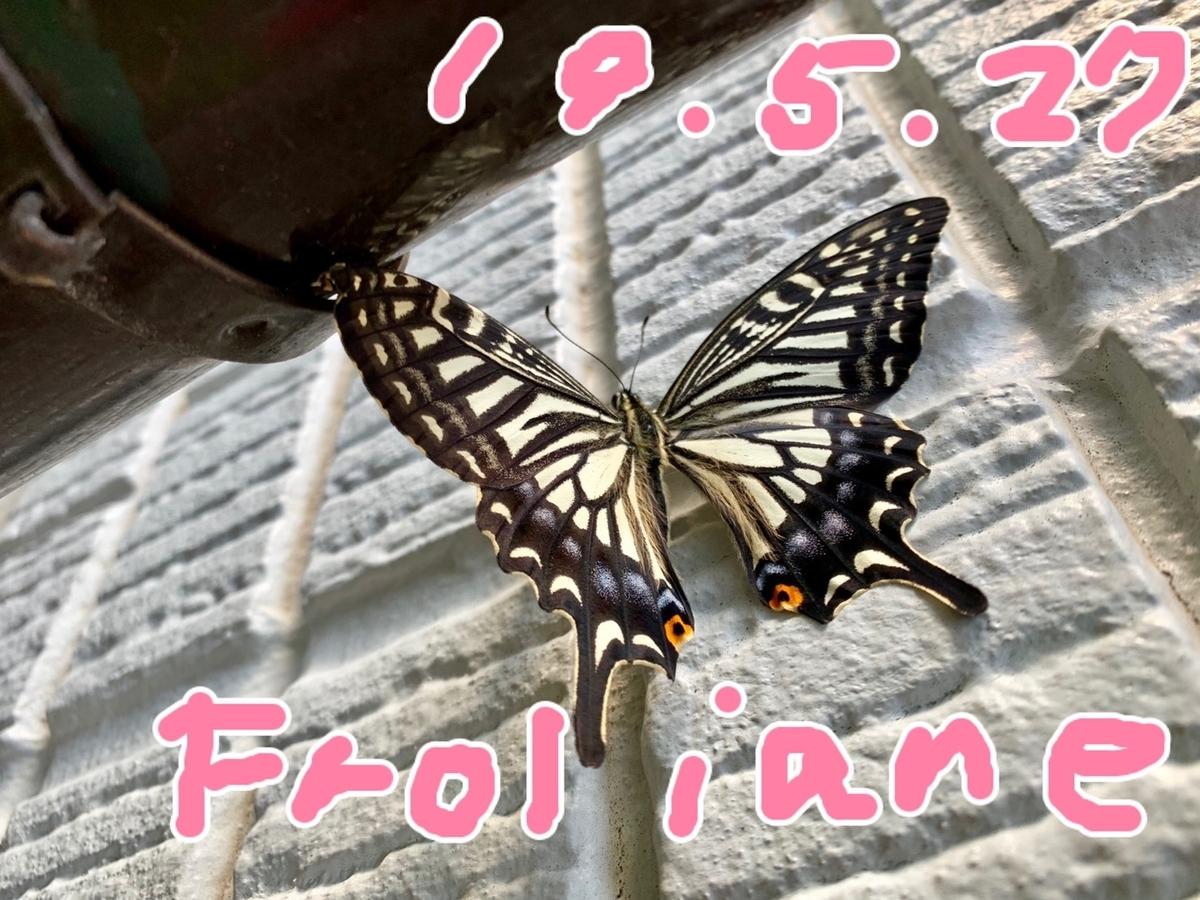 f:id:alichen:20190527140105j:plain