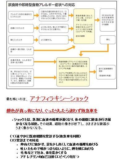f:id:allergy_nagasakikko:20160617215813j:plain