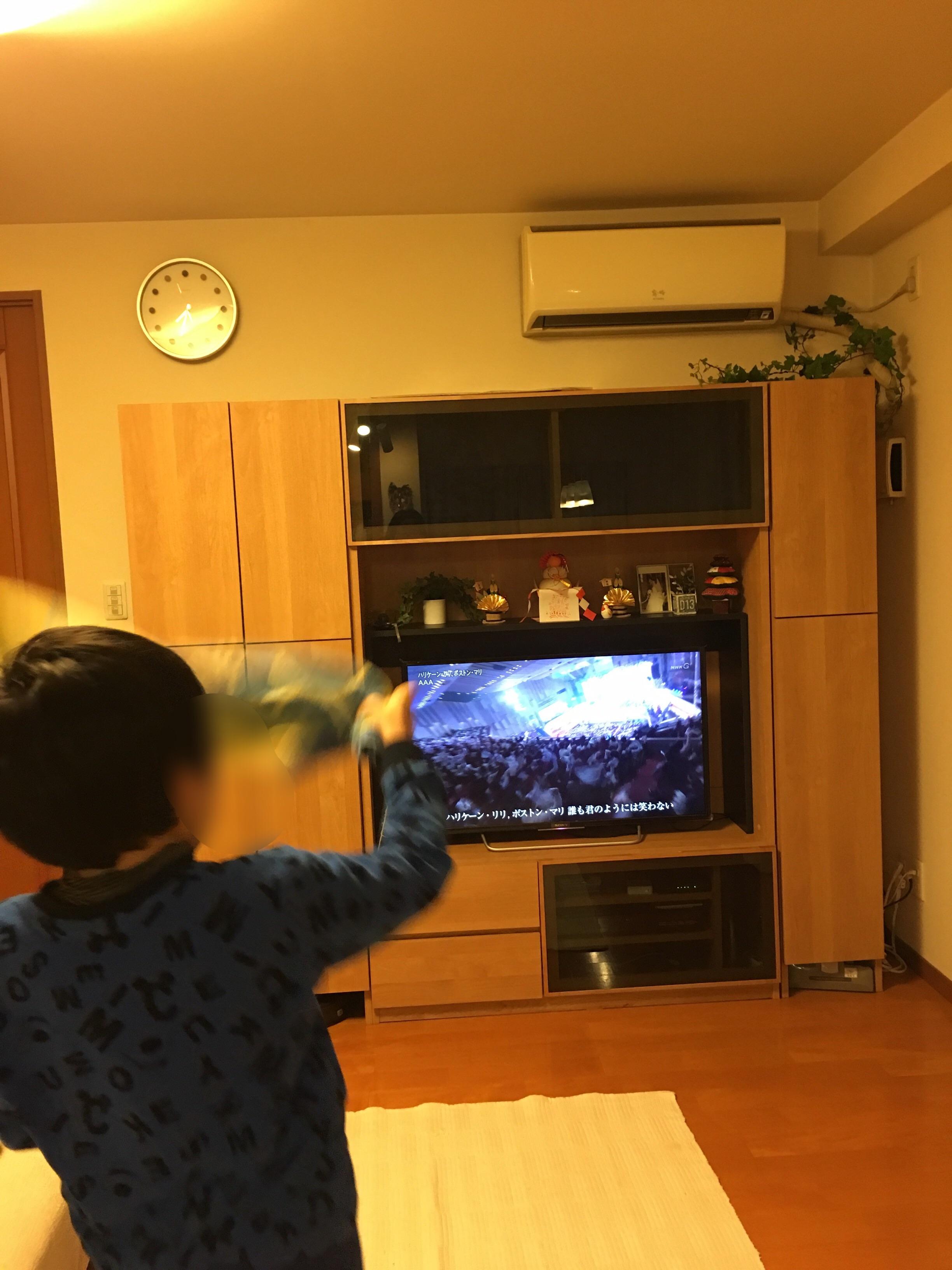 f:id:allergy_nagasakikko:20161231204433j:image