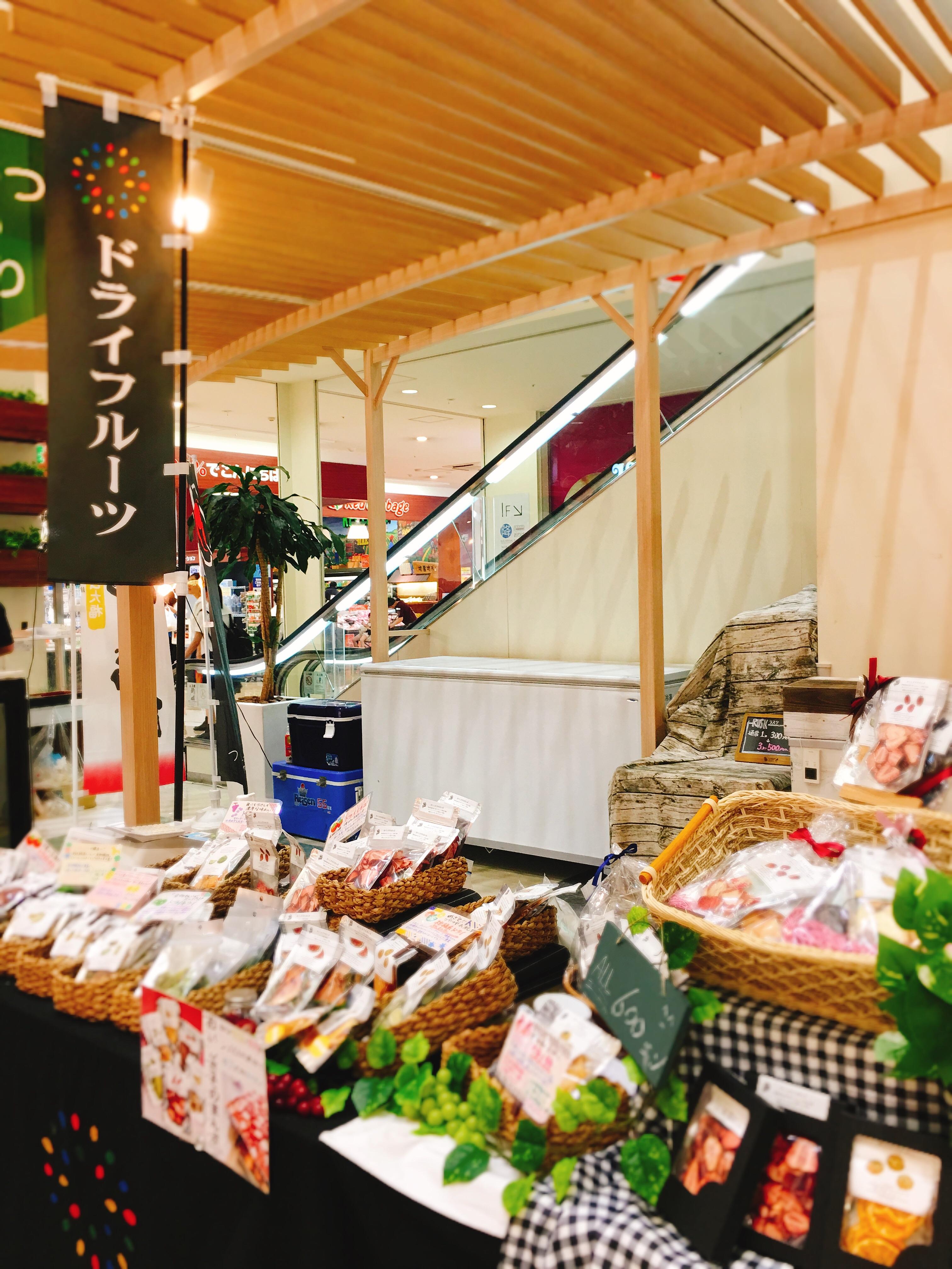 f:id:allergy_nagasakikko:20170818175511j:image