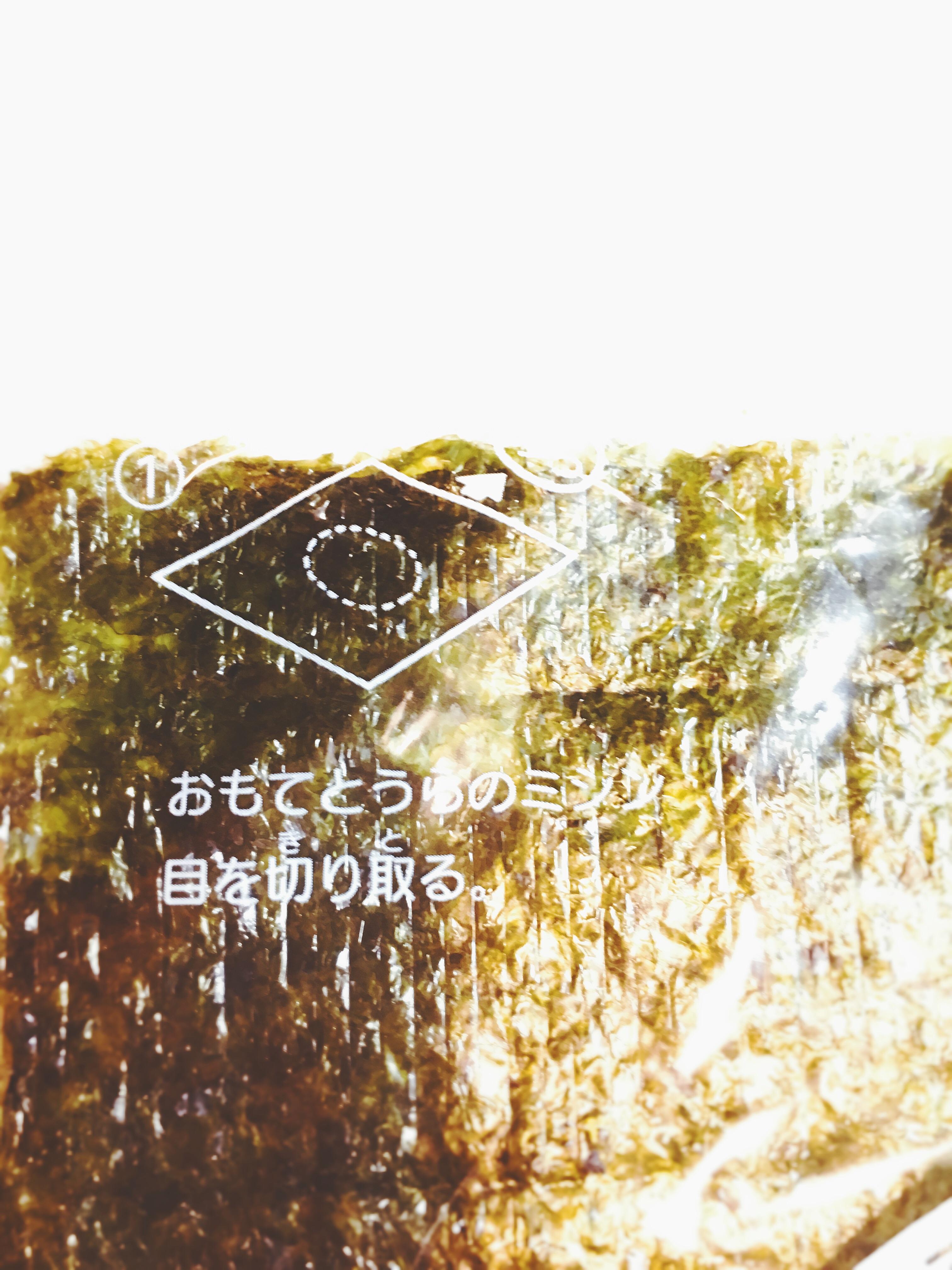 f:id:allergy_nagasakikko:20171128215727j:image