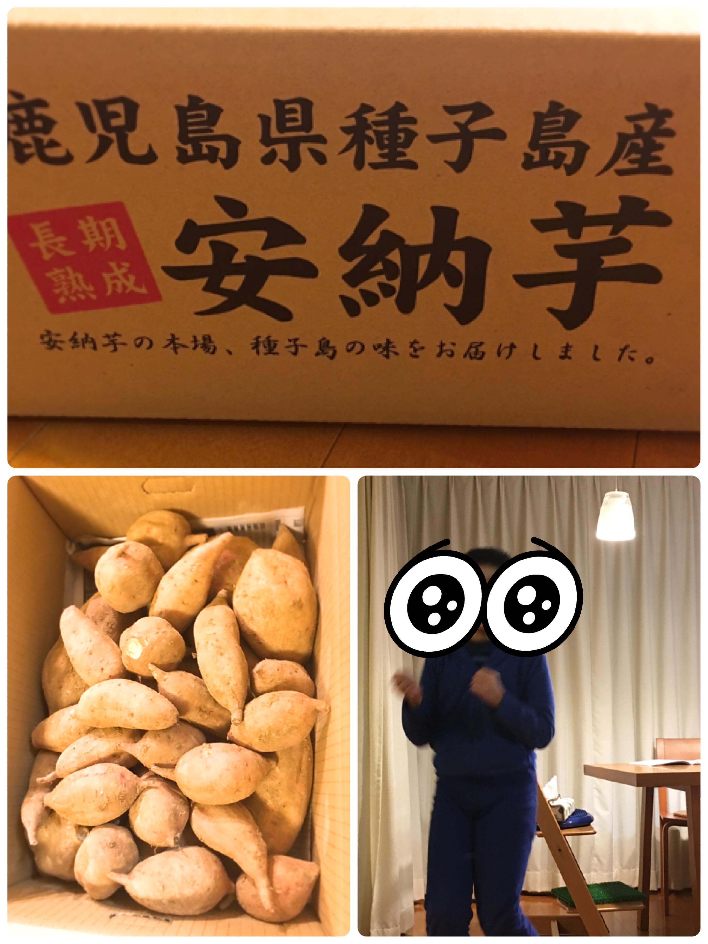 f:id:allergy_nagasakikko:20180208202115j:image
