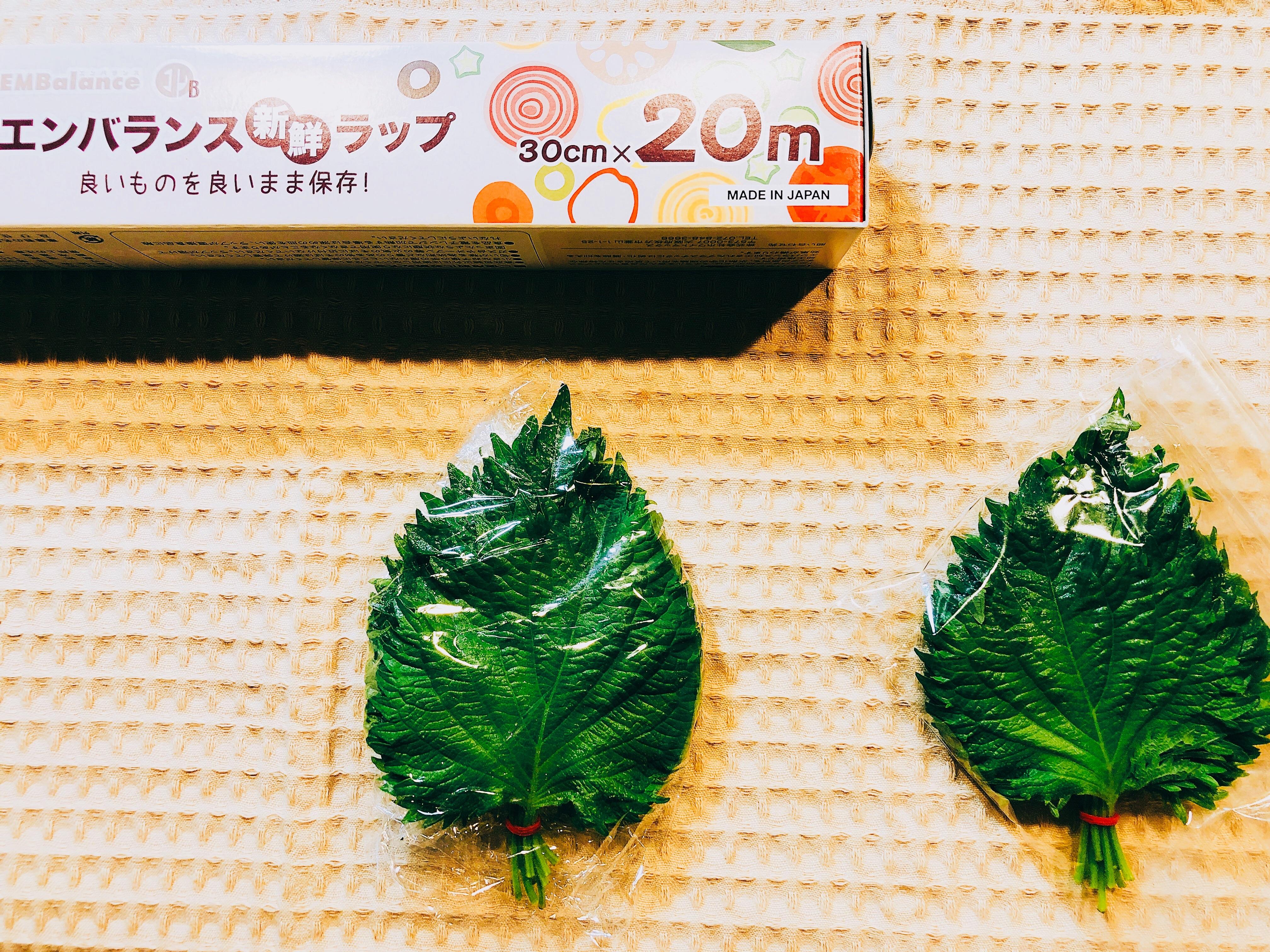 f:id:allergy_nagasakikko:20180605223050j:image