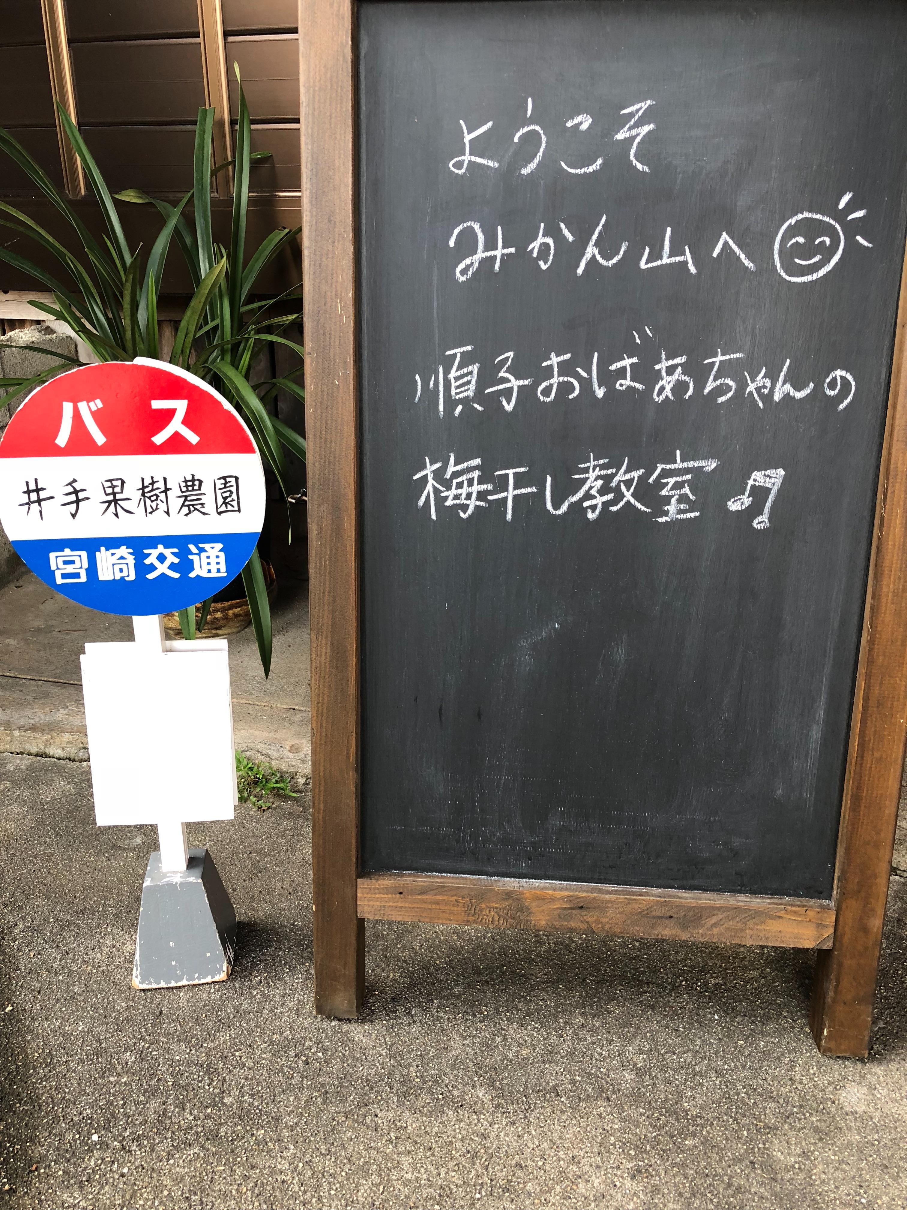 f:id:allergy_nagasakikko:20180623210446j:image