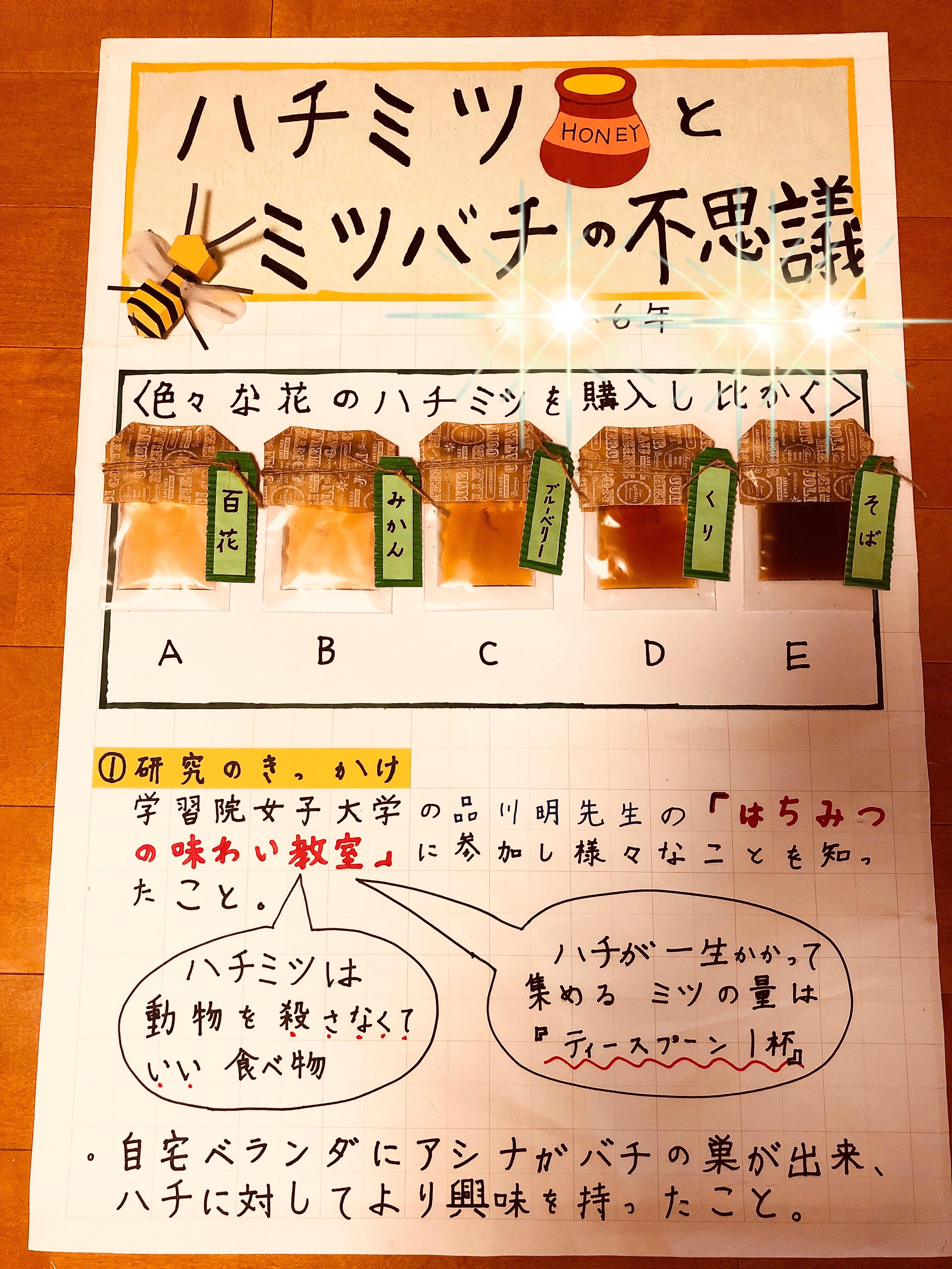 f:id:allergy_nagasakikko:20180902212459j:image