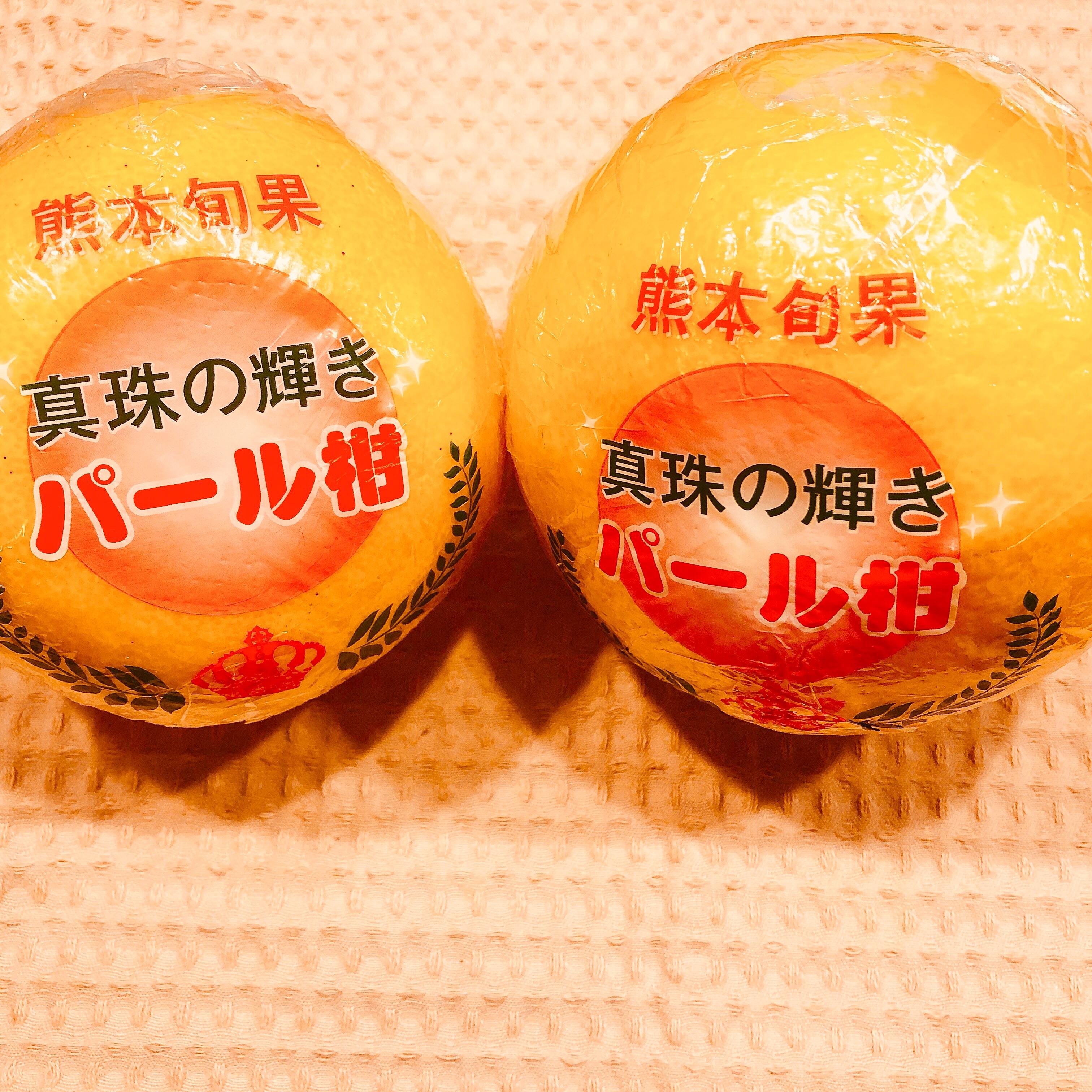 f:id:allergy_nagasakikko:20190406224418j:image