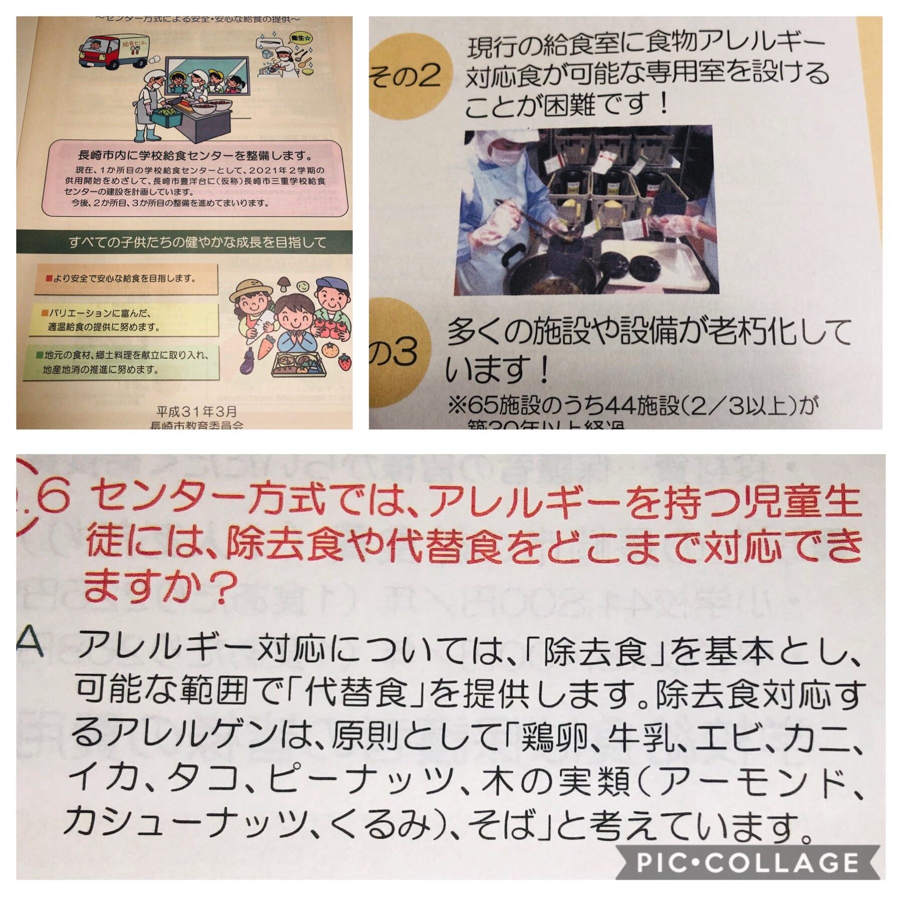 f:id:allergy_nagasakikko:20190410211035j:image