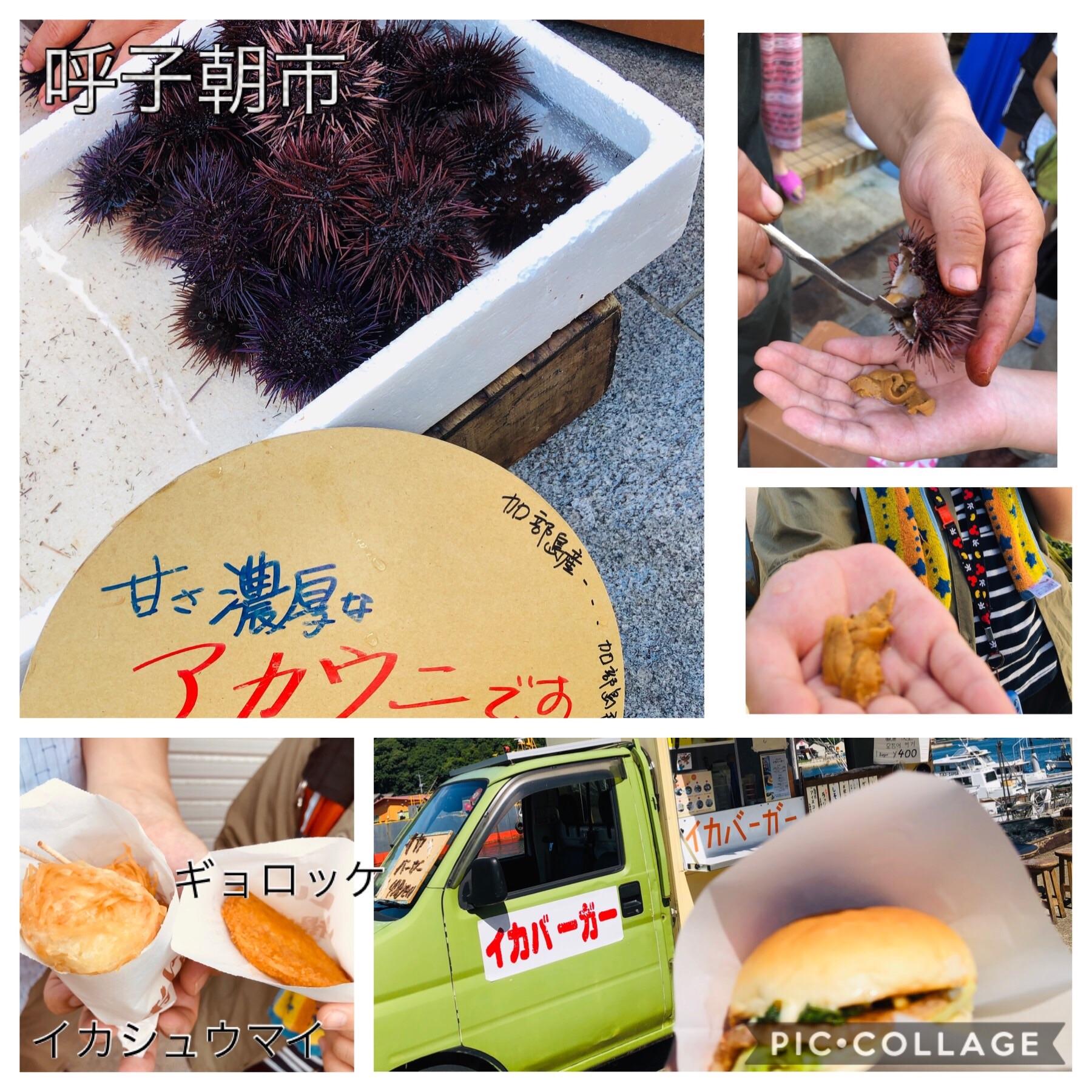 f:id:allergy_nagasakikko:20190811130330j:image