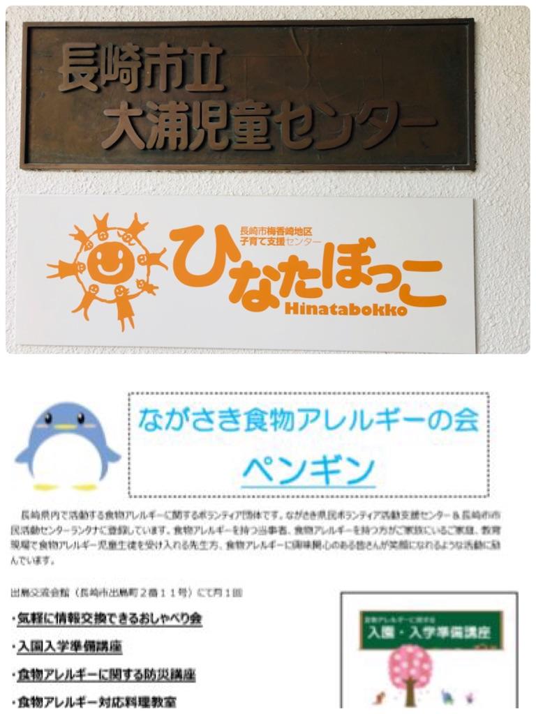 f:id:allergy_nagasakikko:20191230085440j:image