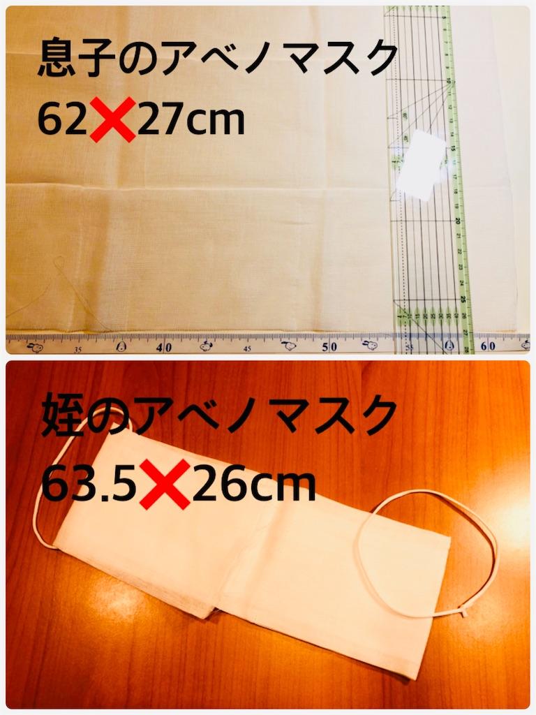 f:id:allergy_nagasakikko:20200429180121j:image