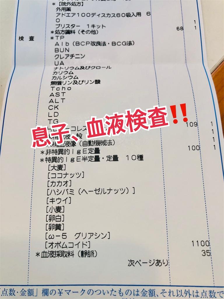 f:id:allergy_nagasakikko:20210104141603j:image