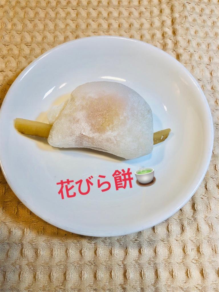 f:id:allergy_nagasakikko:20210105224652j:image