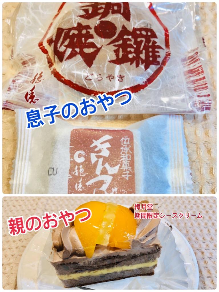 f:id:allergy_nagasakikko:20210204204012j:image