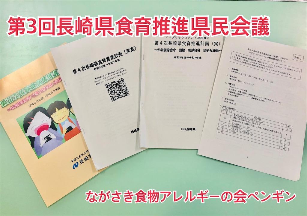 f:id:allergy_nagasakikko:20210208113346j:image
