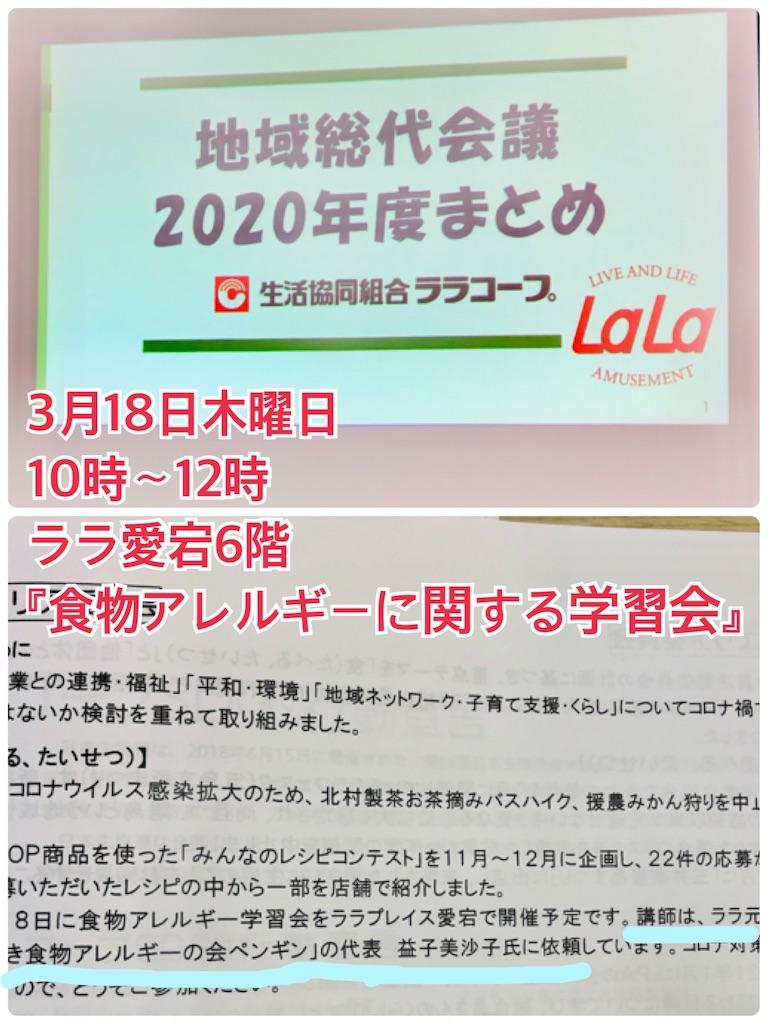 f:id:allergy_nagasakikko:20210218213723j:image