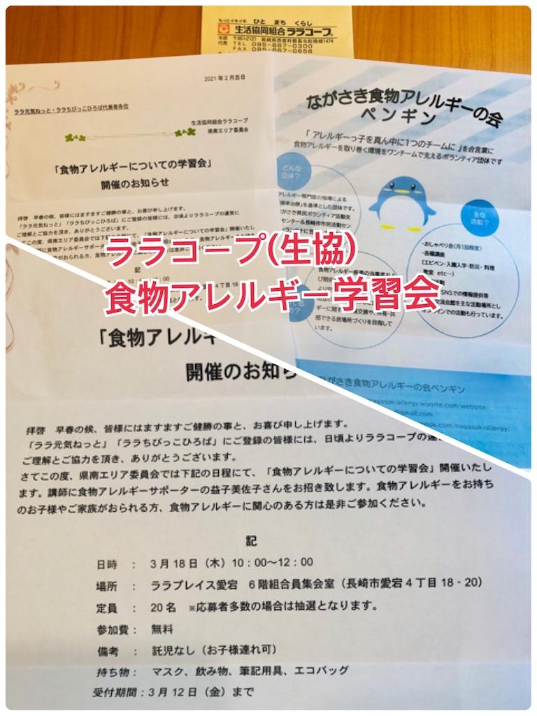 f:id:allergy_nagasakikko:20210225204756j:image