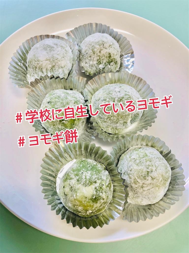 f:id:allergy_nagasakikko:20210308211229j:image