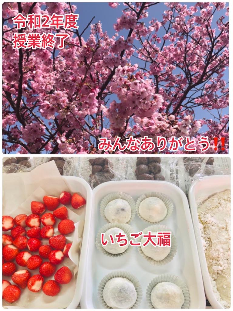 f:id:allergy_nagasakikko:20210317192230j:image