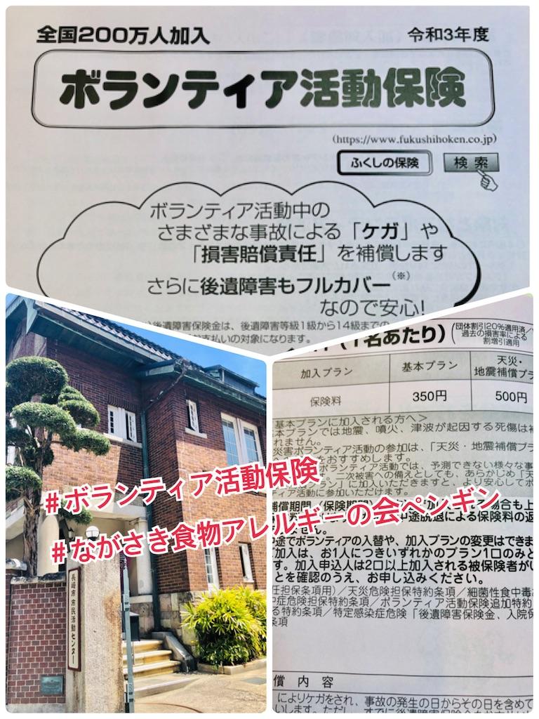 f:id:allergy_nagasakikko:20210424221721j:image