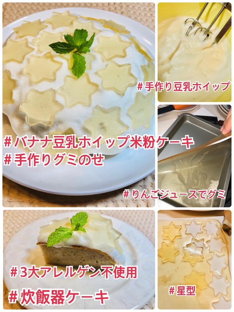 f:id:allergy_nagasakikko:20210504173537j:image