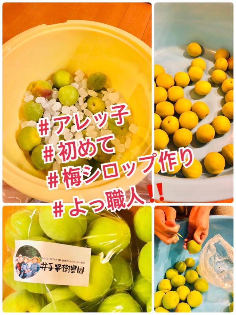 f:id:allergy_nagasakikko:20210605222915j:image