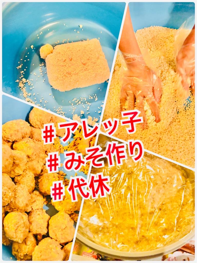 f:id:allergy_nagasakikko:20210608133216j:image