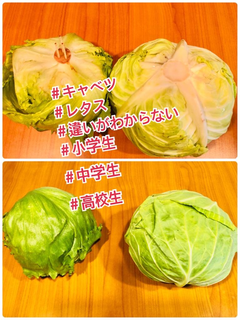 f:id:allergy_nagasakikko:20210611220223j:image