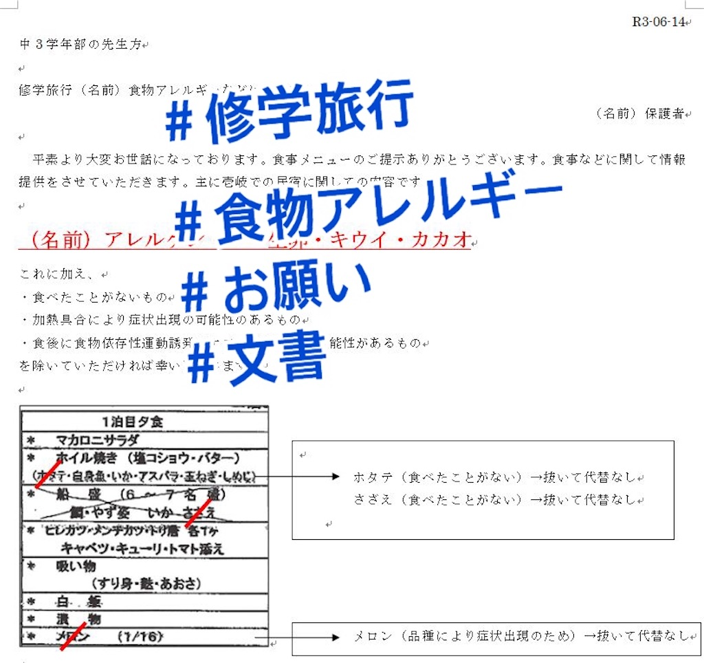 f:id:allergy_nagasakikko:20210722200524j:image