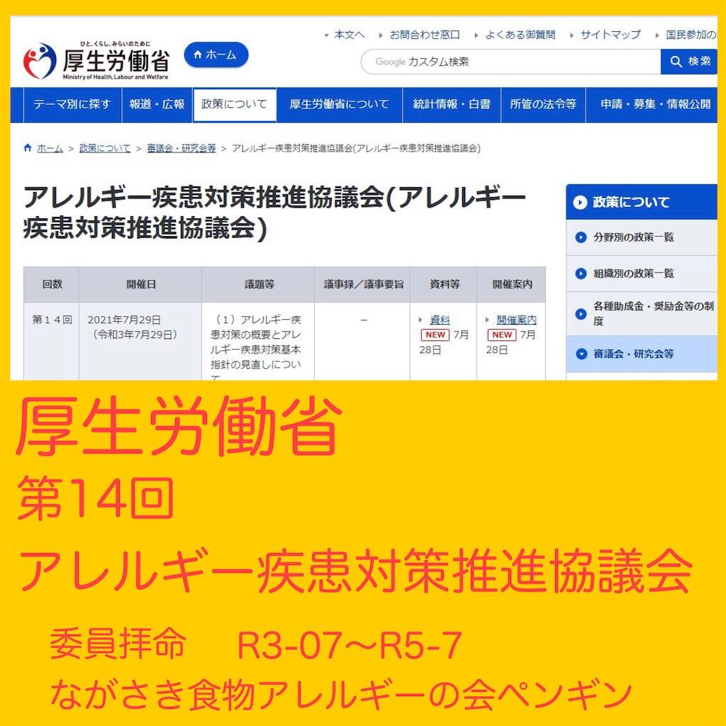 f:id:allergy_nagasakikko:20210729183021j:image