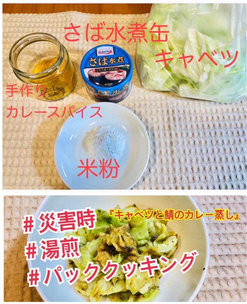 f:id:allergy_nagasakikko:20210731203003j:image