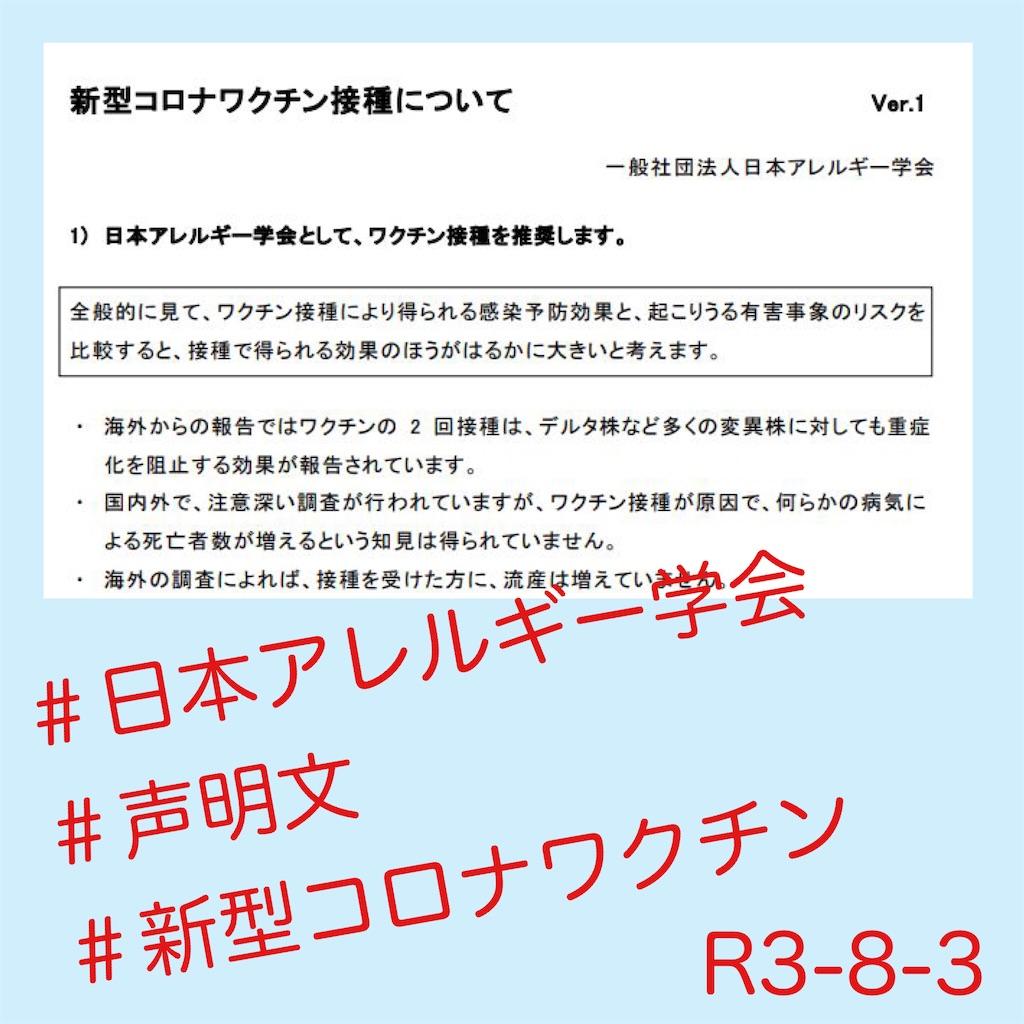 f:id:allergy_nagasakikko:20210804102755j:image