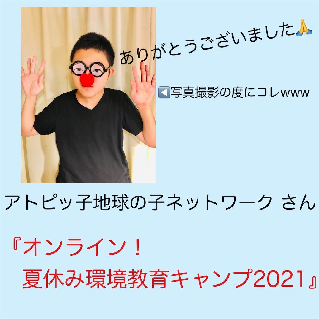 f:id:allergy_nagasakikko:20210815220635j:image