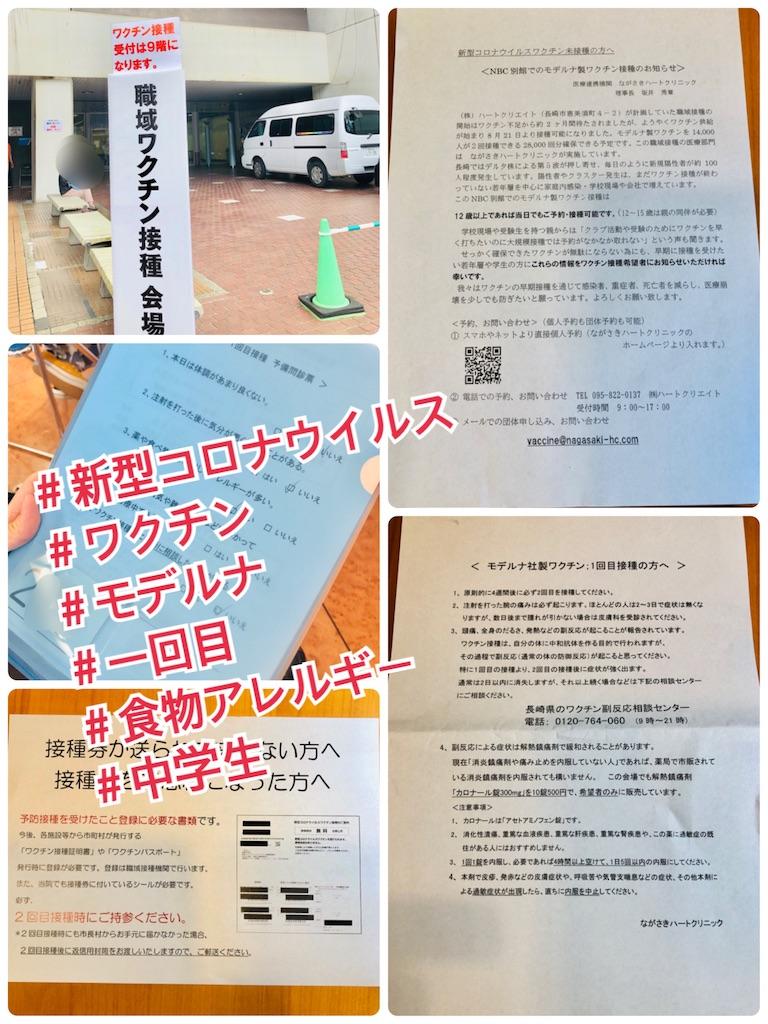 f:id:allergy_nagasakikko:20210904154059j:image