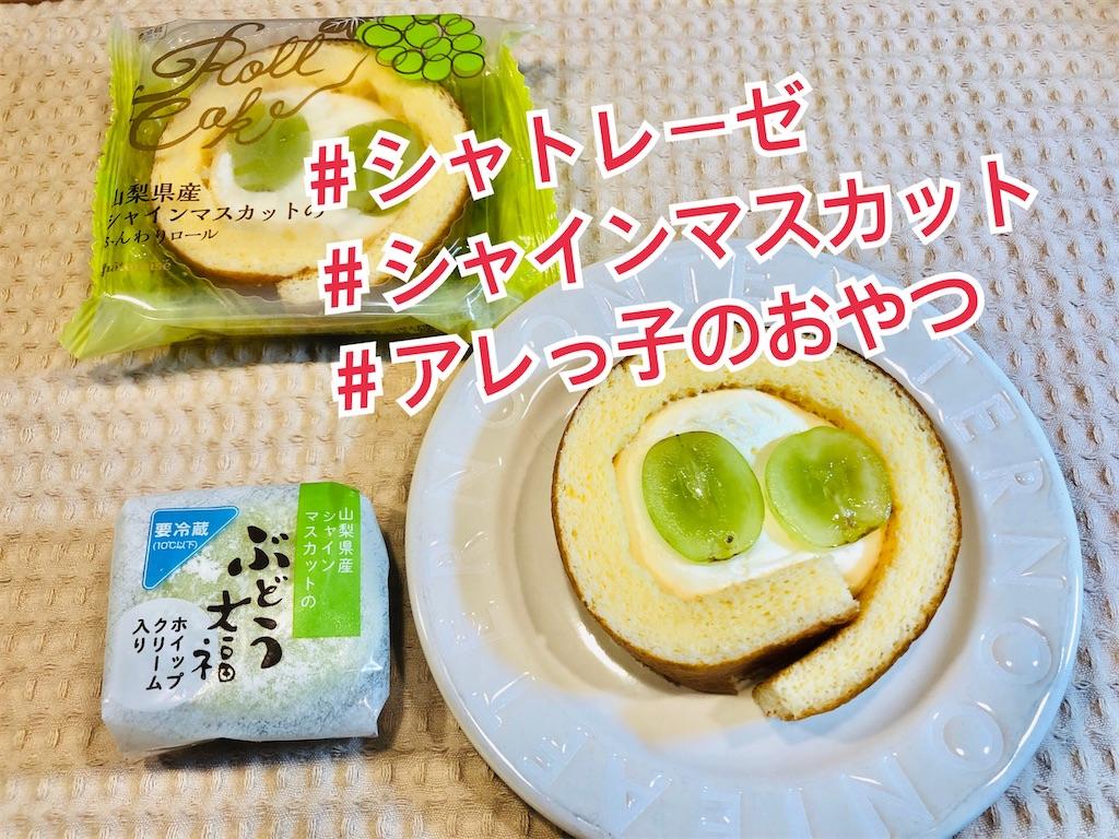 f:id:allergy_nagasakikko:20210905211602j:image