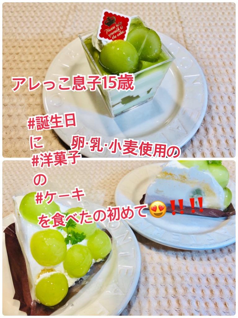 f:id:allergy_nagasakikko:20210923220852j:image
