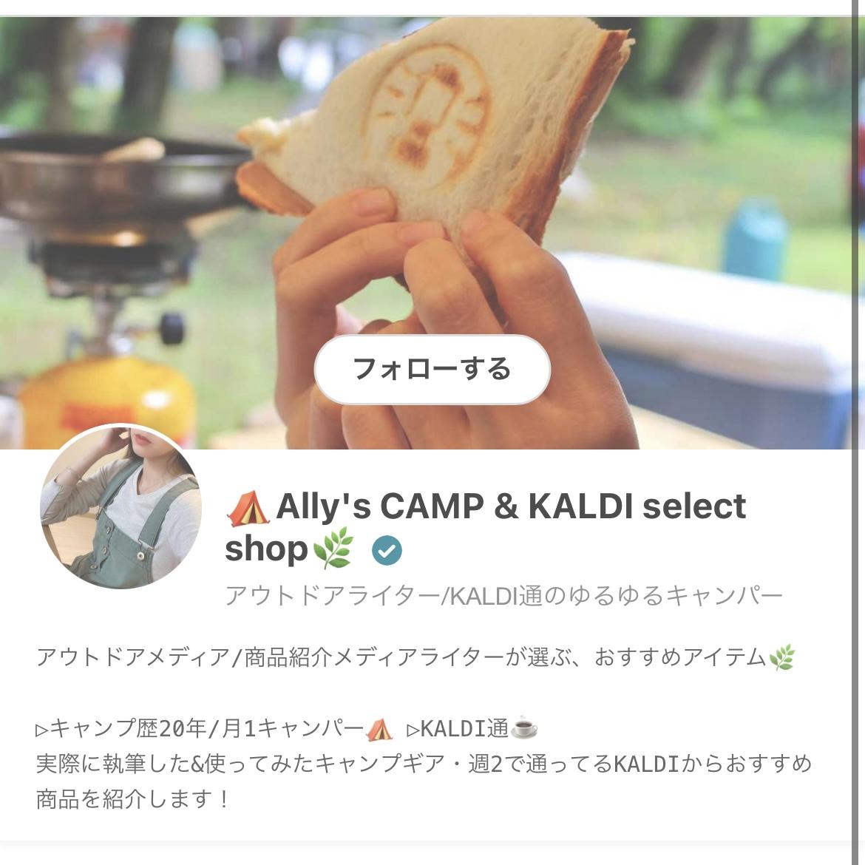 f:id:ally__camp:20210323174158j:plain
