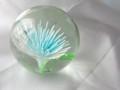 [球体][ガラス]ペーパーウェイト(花入り)